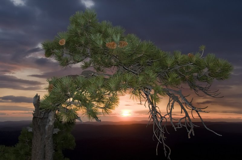 Bent Tree Sunset 04 Oct 09