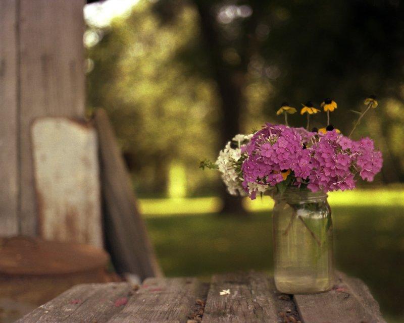 flowersfarm150 16x12.jpg
