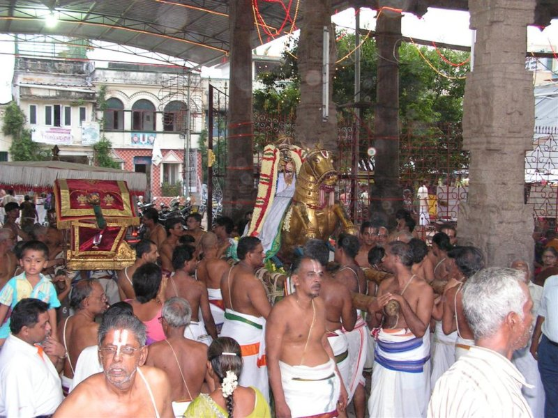 Parthasarathi before Purappadu.JPG