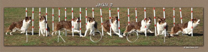 Pessoa Jackie D Weave Montage