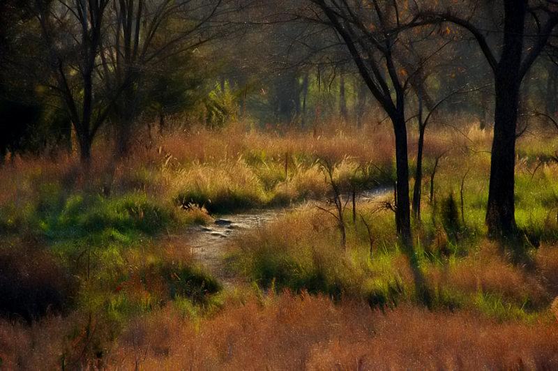 Autumn Pathway  (Adam-ondi-Ahman)