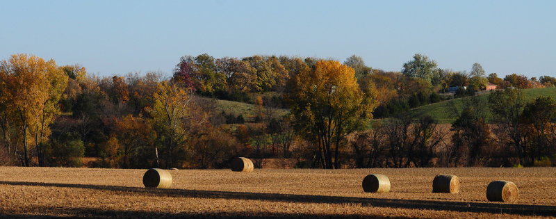 Fall Palette with Hay Bales