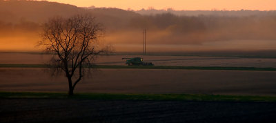 Harvest Time in Grand River Valley