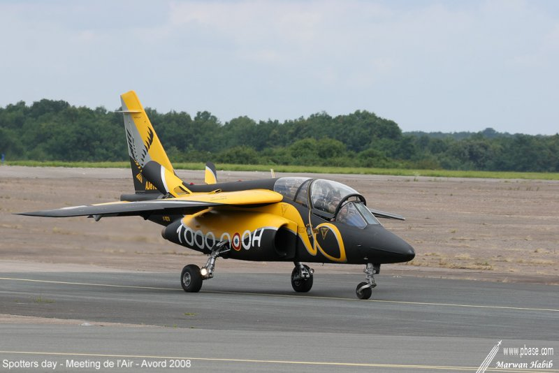Yellow & Black plane / Avion Jaune & Noir
