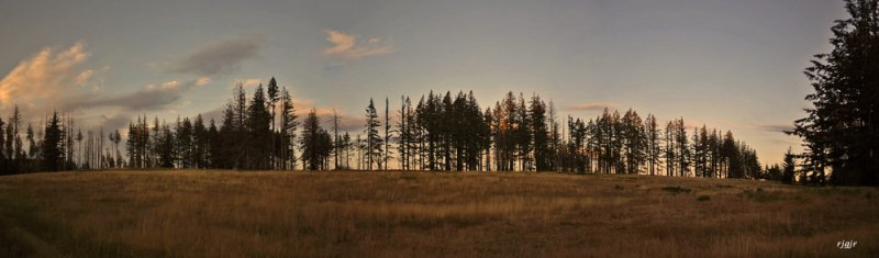 Wildhorse Meadow Sunset, Siskiyou National Forest, OR