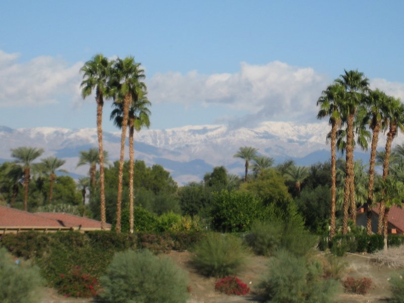 (from parking lot of the Rancho Mirage Library)