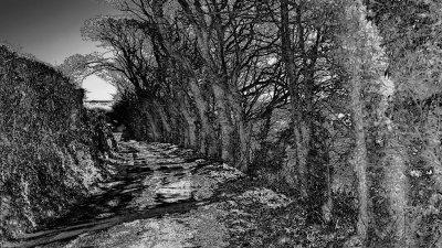 CRW_01065C.jpg Wearde Quay Saltash - © A Santillo 2006