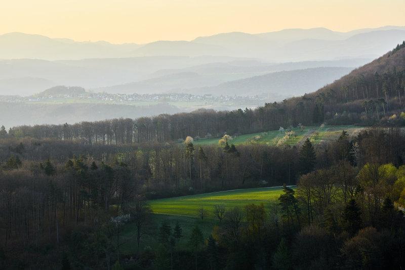 Sicht Gempenplateau Richtung Seltisberg