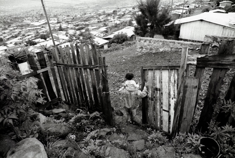 The Barrio