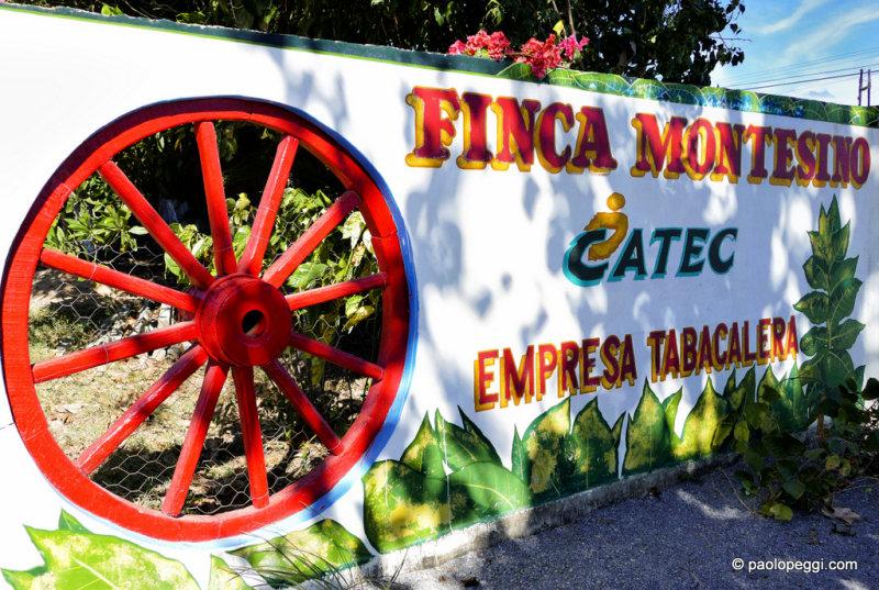 Finca Montesino Pinar del Rio,Cuba - Cultivation of tobacco and Cuban cigar factory