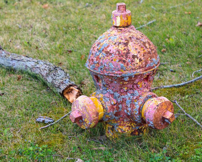 Sunken fire hydrant in Corbyville