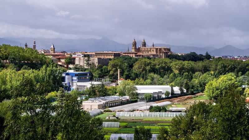 2017 - Zubiri to Pamplona - IMGP3333