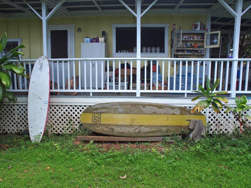 Hawaiian Workshop