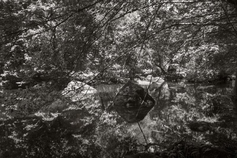 Corot2015_L1003078sepia.jpg