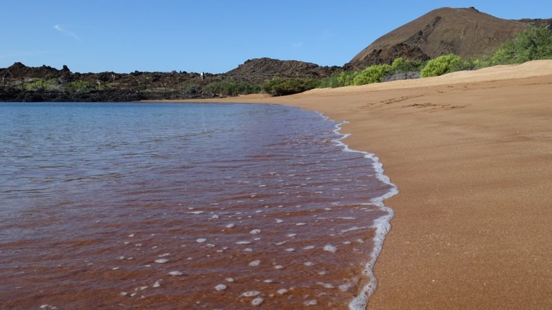 Bartolomé Island Beach