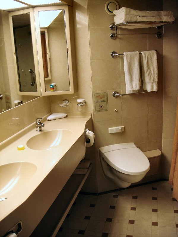 SS 8043 toilet and sinks