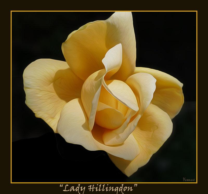 Lady Hillingdon