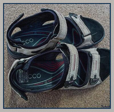 A shoe/sandal/slipper