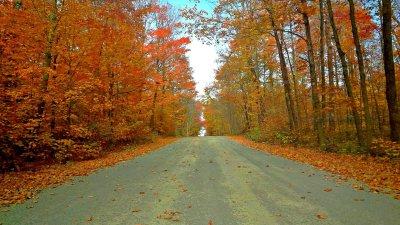 Autumn mood at Rivière-des-Pins
