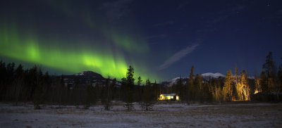 Yukon Auroras