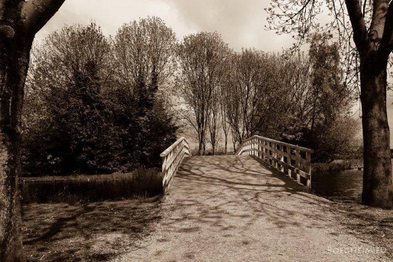 Day122_park_Bridge.jpg
