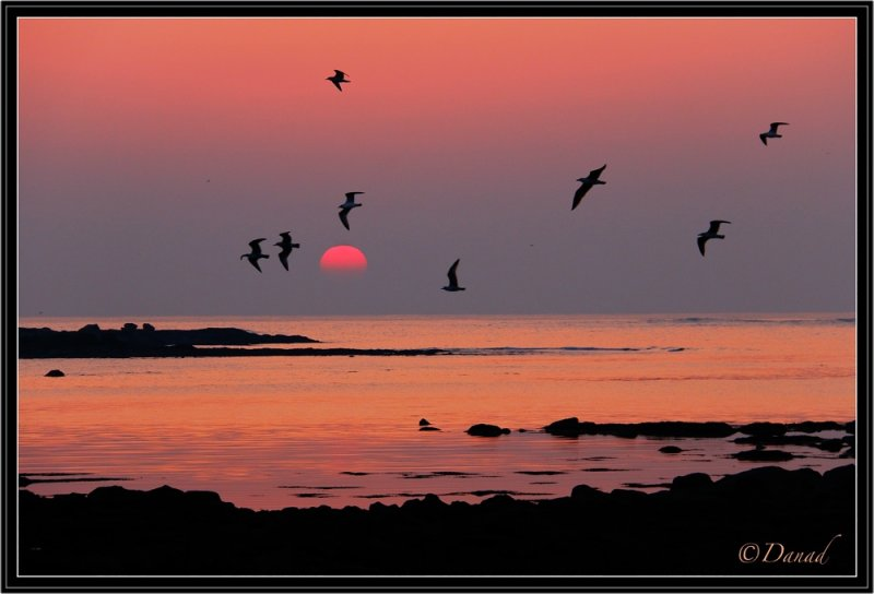 A Winter Sunset.