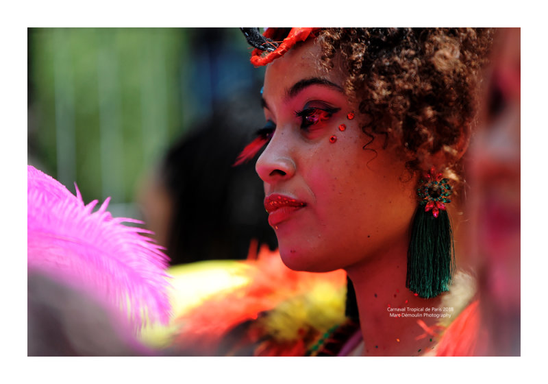 Carnaval Tropical de Paris 2018 - 15