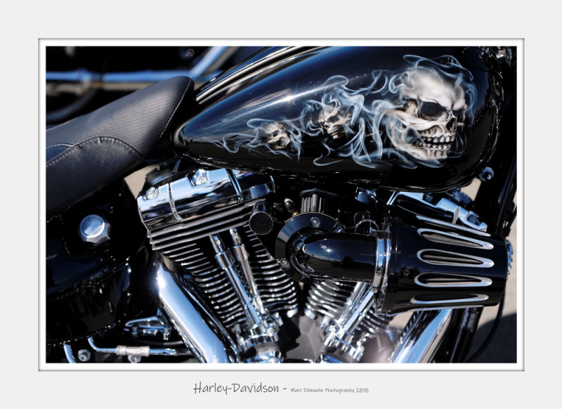 Harley-Davidson 6