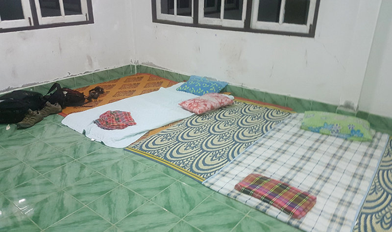 Bedding at HQ