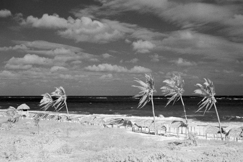 Beach in Infrared