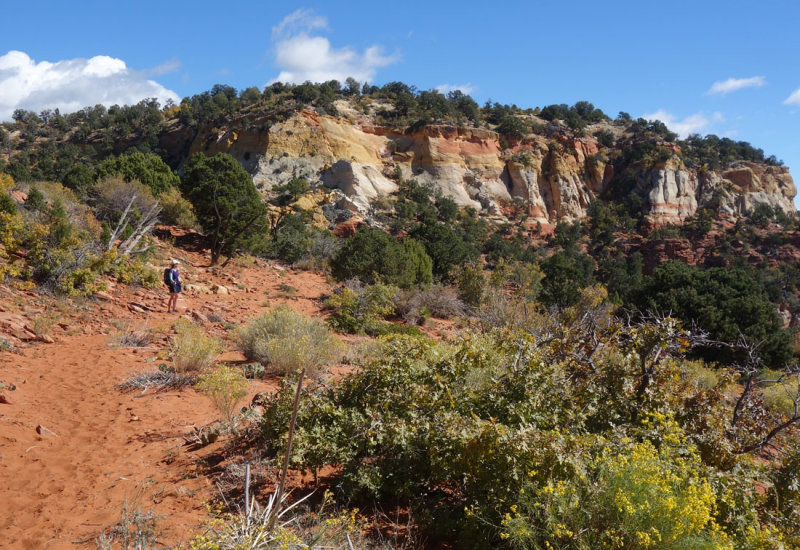 Zion- On the deer trap mountain trail