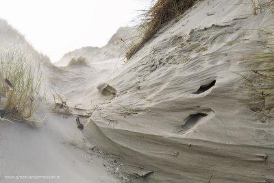 2N9B2076 winderosion dunesTerschelling