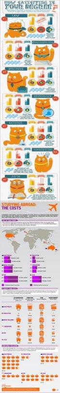 University Degree Education Infographics
