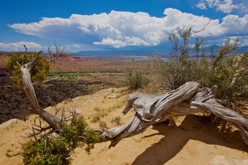 Ghost Ranch : Overlooked