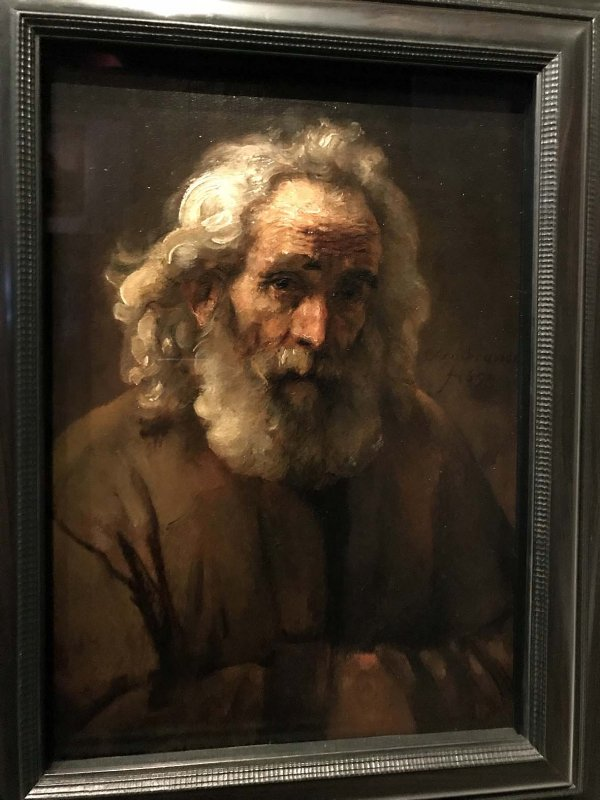 Lighting study of an old man with curly hair (1659) - Rembrandt - 8190