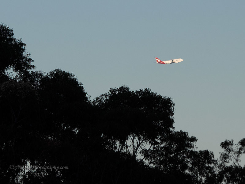 20200722_165648_7224013 Leavin, Is That Jet Plane, No It Aint Comin Back Again