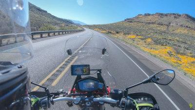Wildflower Super Bloom Motorcycle Ride
