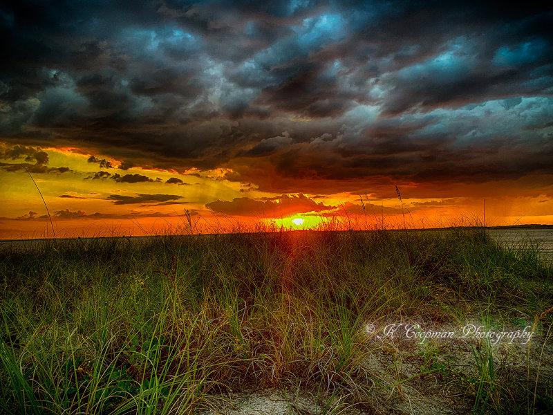 Treasure-Island-Sunset.web.jpg