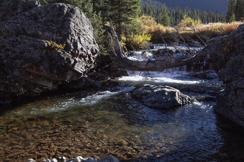 A Mountain Stream Near Silverton, Colorado