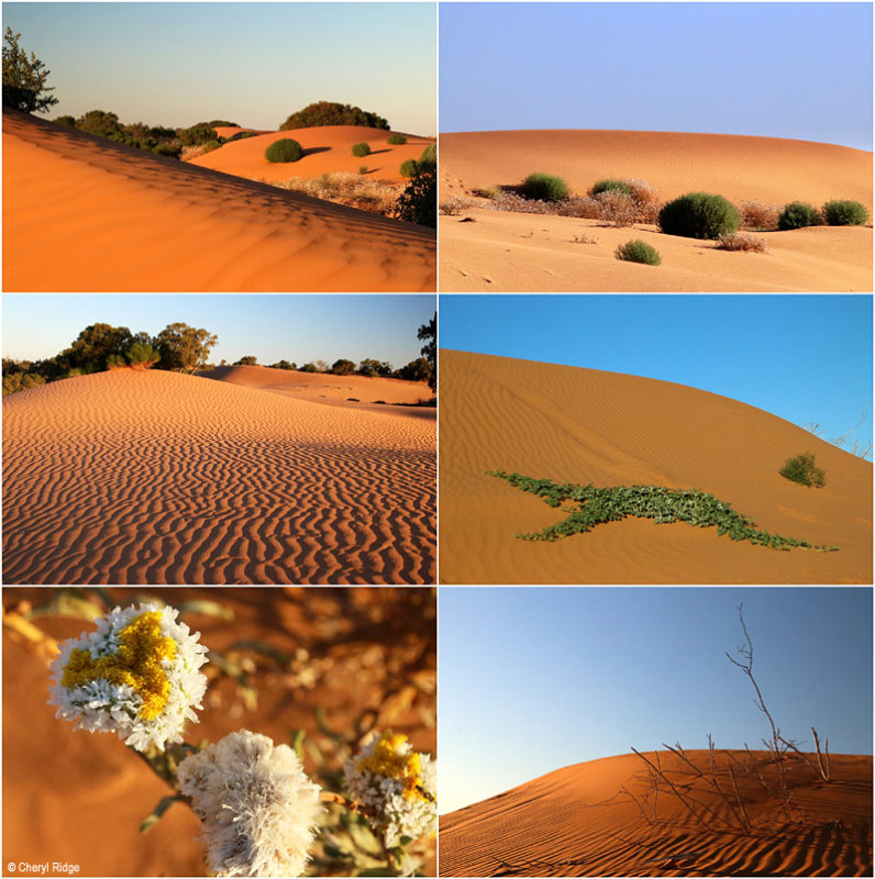 Perry sandhills