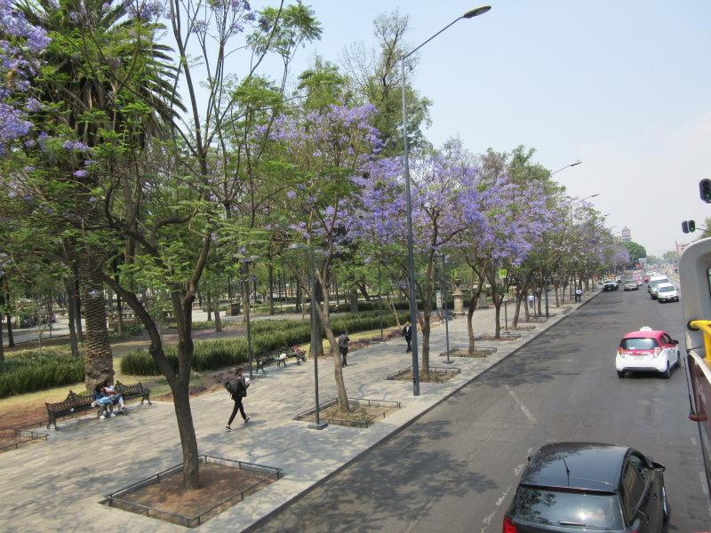 Alameda Central - beautiful park