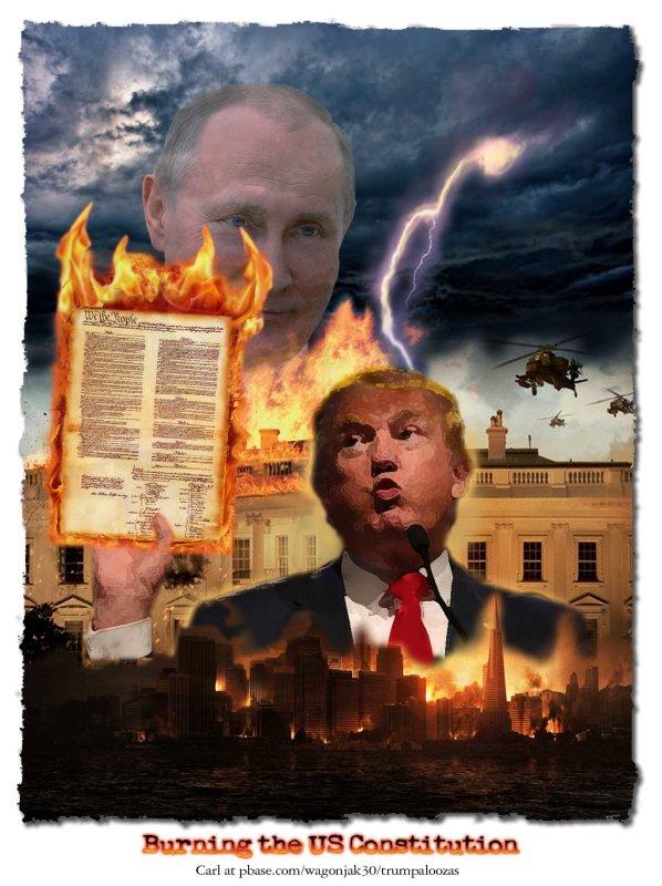 Burning The US Constitution