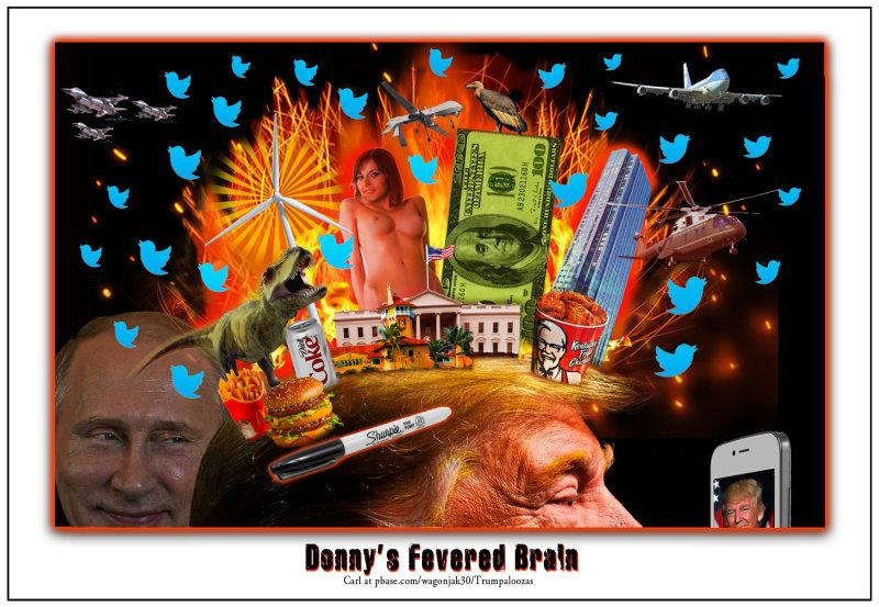 Donnys Fevered Brain