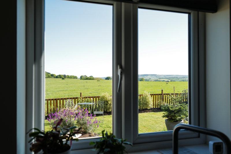 Locked Down - Kitchen window view