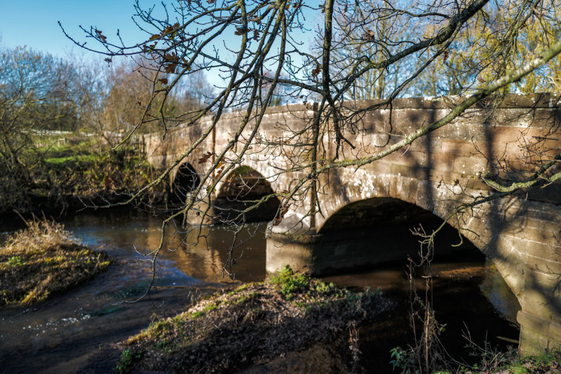 Shadows on the Bridge over the river Otter