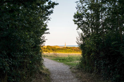 Evening walk to Orcombe Point