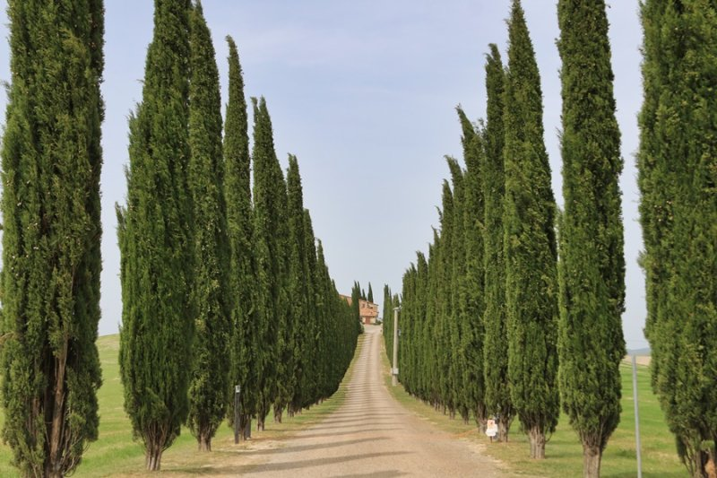 Tuscany. Val D´Orcia