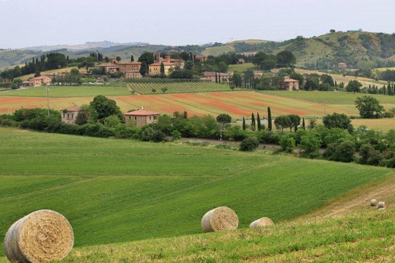 La Toscana (Tuscany)