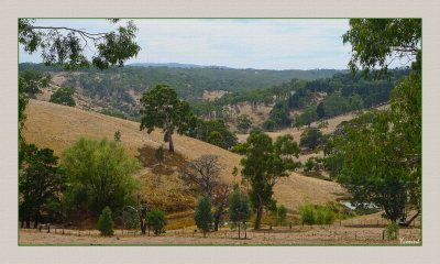 Sunburnt Hills