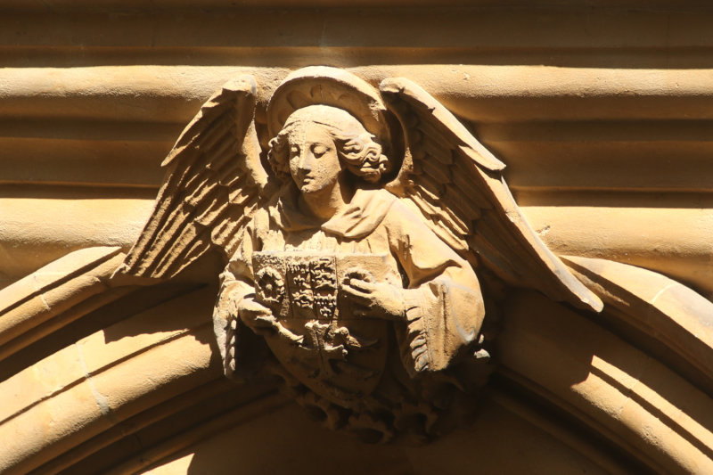 287:365<br>Street Angel